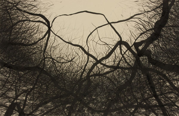 Sumi ink on paper, 14 x 22 inches, 2009