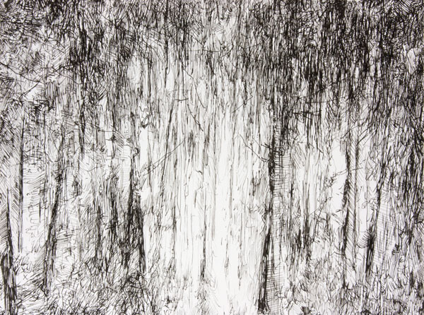 Ink on paper, 9 x 12 inches, 2011