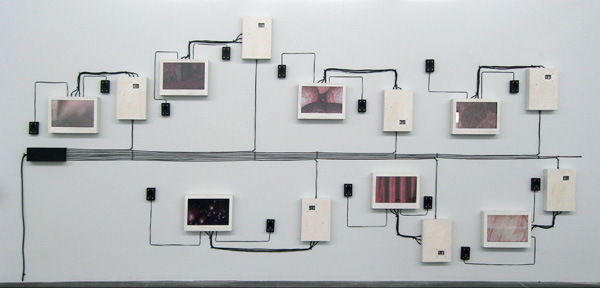 Installation: digital models, augmented voice recordings, LCD screens, DVD players, speakers, wires, wood, and Plexiglas, 20 x 9 feet, 2008