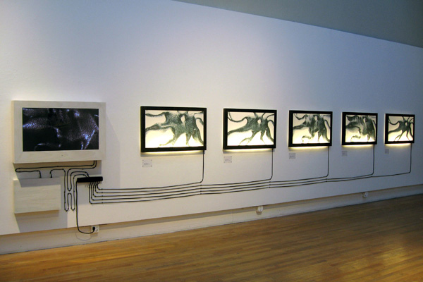 Digital model, HD LCD TV, Blu-ray player, cords, Plexiglas, wood, 60 x 43 x 6 inches on 35-foot wall, 2008