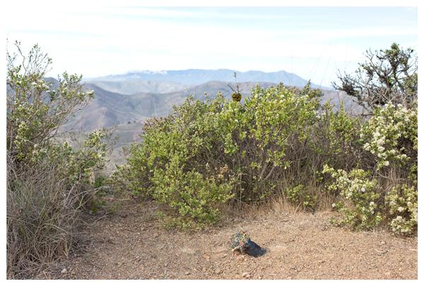 Wire conduit, Hawk Hill; Marin Headlands; Marin, CA, October 2014
