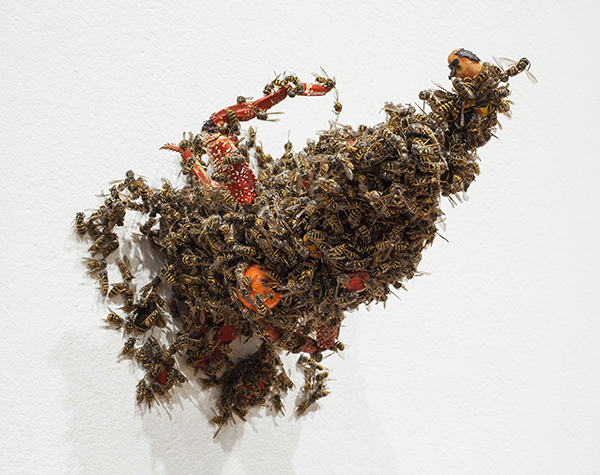 Common yellowjackets, thin-shelled rock crab, marbles, shell fragments, mescal bean, paint, foam insulation, 2013