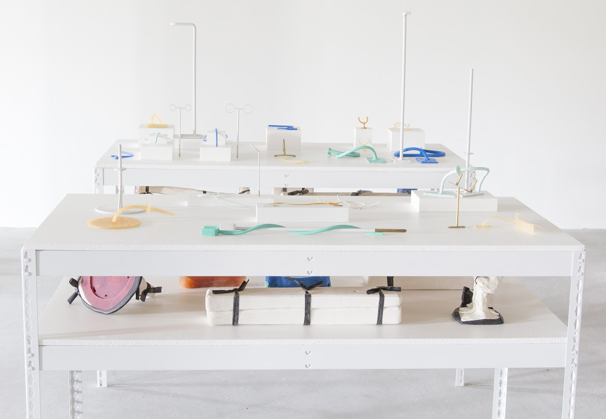 Silicone, urethane, plaster, brass and steel object mounts borrowed from the Oakland Museum of California, bolt-less storage shelf, wood, 36in x 60in x 30in, 2015