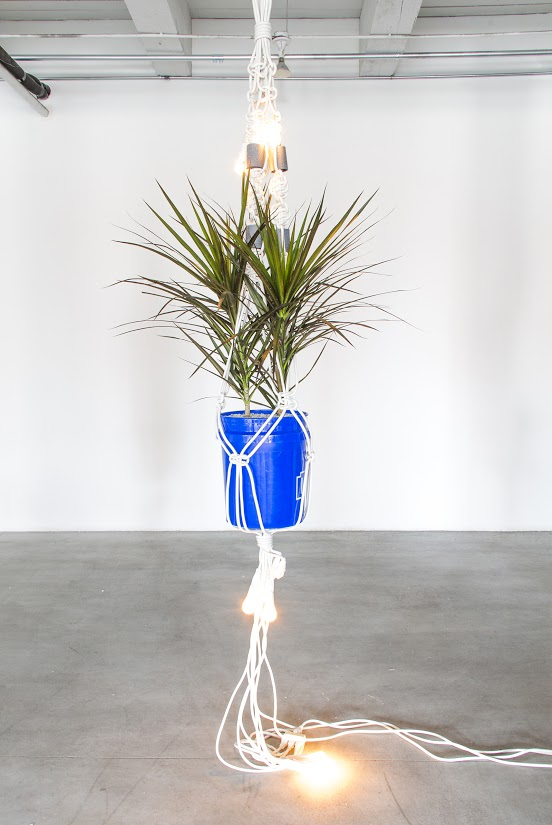 Seven extension cords, light bulbs, house plant, small white rocks, bucket, pvc pipe, paint, 96in x 14in x 14in, 2015
